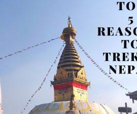 Top 5 reasons to trek in Nepal