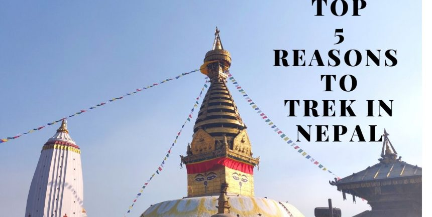 Top 5 reasons to trek in Nepal